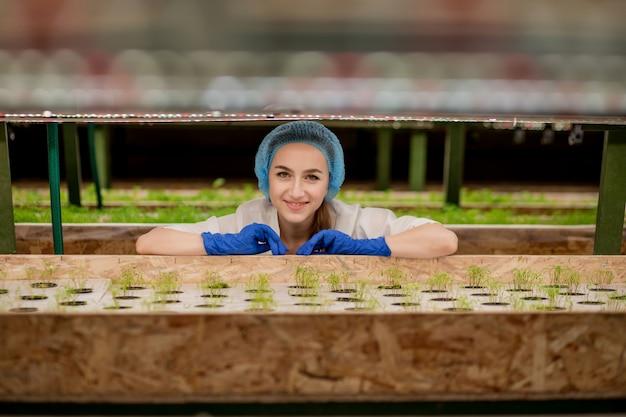 Vrouwelijke tuinmannen houden het groen op een hydrocultuurboerderij en observeren het groeigroen nauwgezet voordat het aan de klant wordt geleverd. hydrocultuur groen groeit in hydrocultuur boerderij.