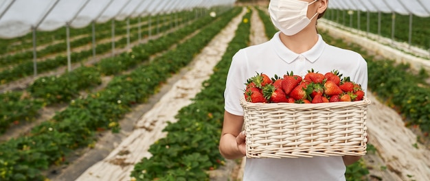 Vrouwelijke veldwerker met mand met aardbeien