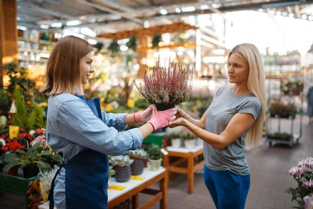 Vrouwelijke verkoper toont planten in een pot aan vrouw in winkel voor tuinieren. verkoopster in schort verkoopt bloemen in bloemistwinkel