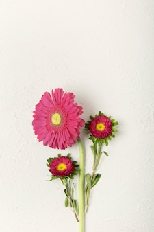 Vrouwelijke verse bloemen met kopie ruimte