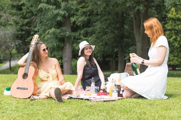 Vrouwelijke vrienden die van de drank op picknick genieten