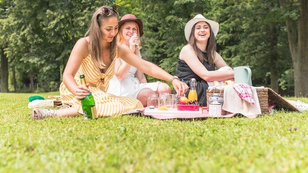 Vrouwelijke vrienden genieten van drankjes en fruit op picknick