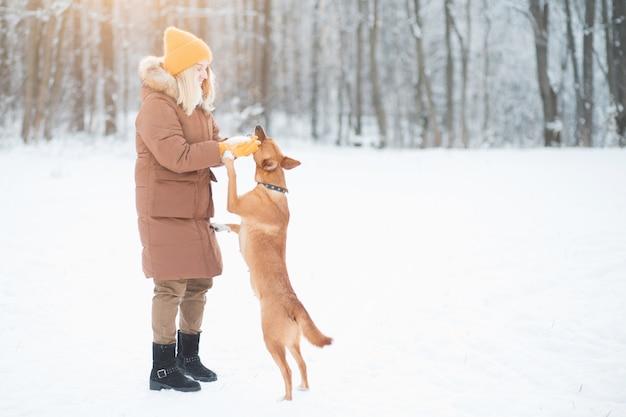 Vrouwelijke vrijwilliger spelen met dakloze hond bij dierenasiel buitenshuis