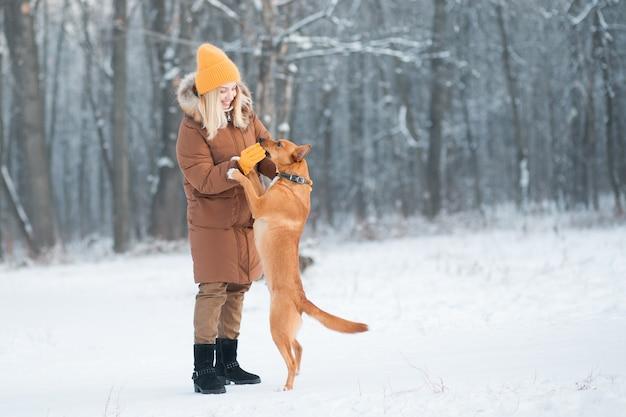 Vrouwelijke vrijwilliger voedt en speelt met dakloze hond bij dierenasiel