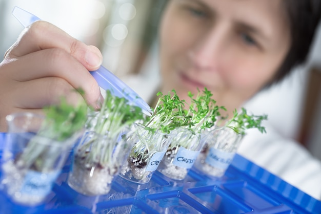 Vrouwelijke wetenschapper of tech plukt een tuinkerspruit uit een testpot