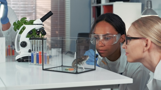 Vrouwelijke wetenschappers die verbazing tonen tijdens het verstrekken van experimenten.