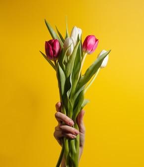 Vrouwen hand met bloemen op gele achtergrond. boeket van witte en roze tulpen voor verjaardag, gelukkige moeders of valentijnsdag en 8 maart. stock foto