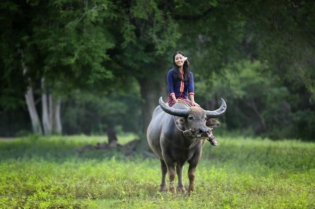 Vrouwen zitten onder boom tegen buffels in landelijke velden