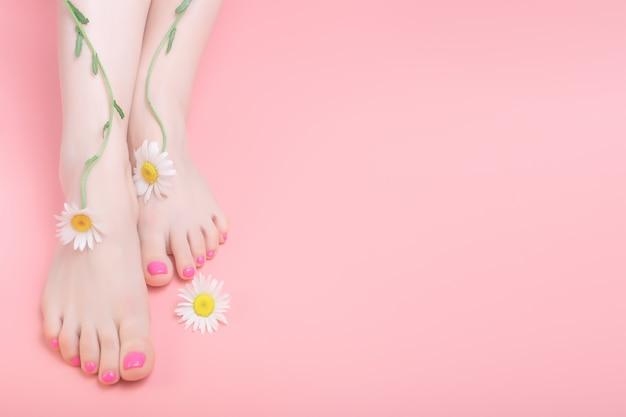 Vrouwenbenen met heldere pedicure op een roze achtergrond. kamille bloemdecoratie. spa pedicure huidverzorging concept