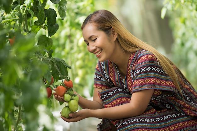 Vrouwenboer die tomaat controleren op tomatenlandbouwbedrijf