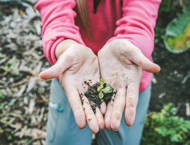 Vrouwenhanden die een zaad in de tuin van het binnenplaatshuis planten