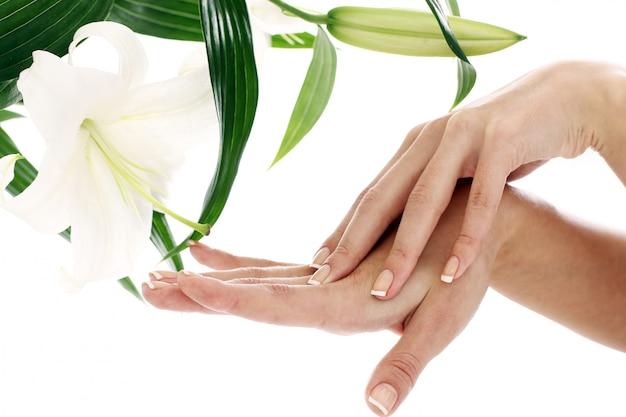 Vrouwenhanden en lilly bloem