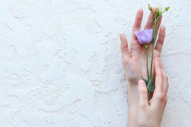 Vrouwenhanden houden een paarse bloem vast, het uitzicht van bovenaf