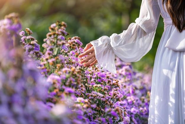 Vrouwenhanden raken paarse bloemen in de velden