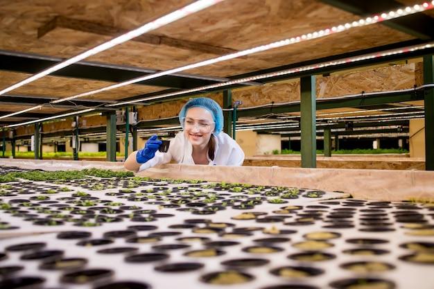 Vrouwentuinders houden groen op een hydrocultuurboerderij en observeren het groeigroen nauwgezet voordat het bij de klant wordt afgeleverd