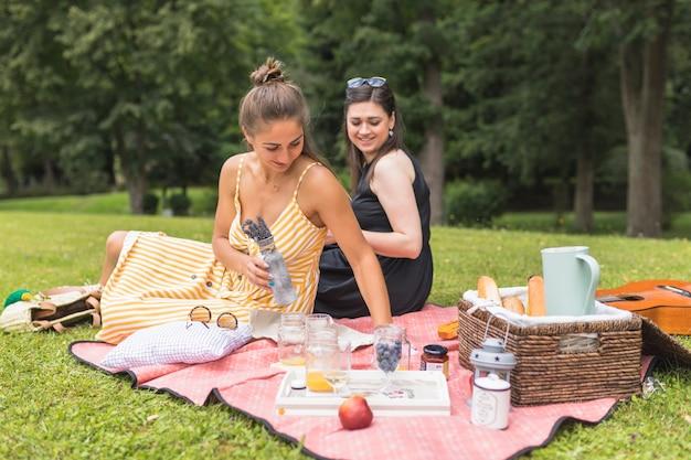 Vrouwenzitting in gras die bij picknick genieten van