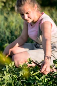 Vrouwenzitting op het gras