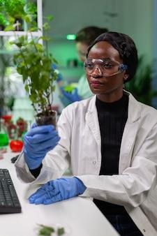 Vrouwonderzoeker die groene jonge boom bekijkt die met tomaat vergelijkt