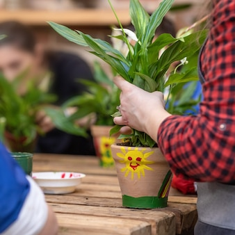 Vrouwtuinman die een installatiewortel houdt, die een vredeslelie spathiphyllum plant