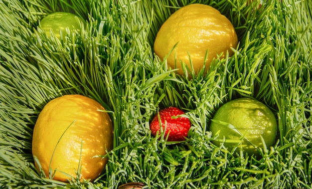 Vruchten van citrus-limoen-citroen en rode aardbeien liggen op een zonnige dag in groene tarwe
