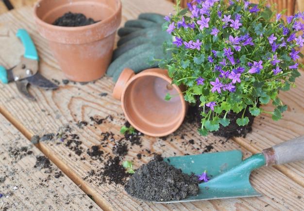 Vuil in een schop tot ingemaakte lentebloemen in pot op een houten tafel