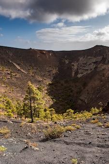 Vulkanen met oude lava en pijnbomen natuurpark cumbre vieja canarische eilanden spanje