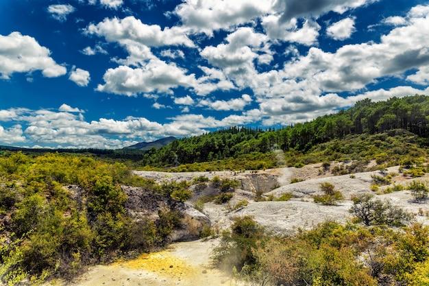 Vulkanische activiteit en naaldboslandschap in wai-o-tapu wonderland, nieuw-zeeland