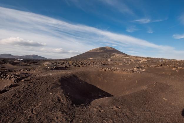 Vulkanische wijngaard in la geria, lanzarote, canarische eilanden, spanje.