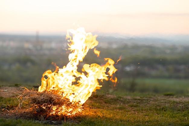 Vuur branden op een groen grasveld