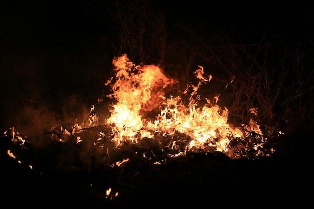 Vuur vlammen branden droog gras op donkere achtergrond.