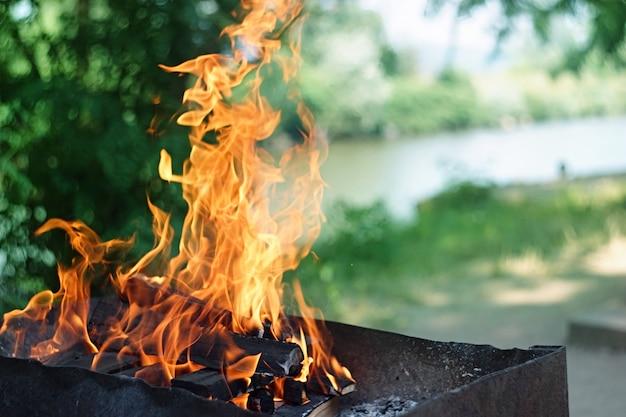 Vuur, vlammen van houtskool voor grill of bbq-picknick, rook en brandhout buiten