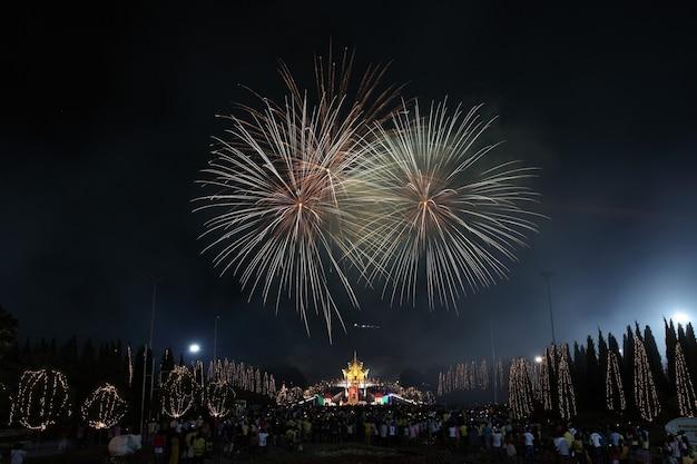 Vuurwerk in de verjaardag van de nieuwe jaarvakantie
