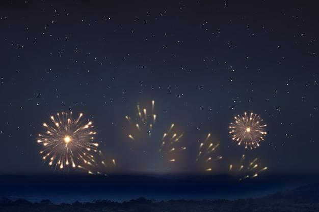 Vuurwerk met de achtergrond van de nachtscène