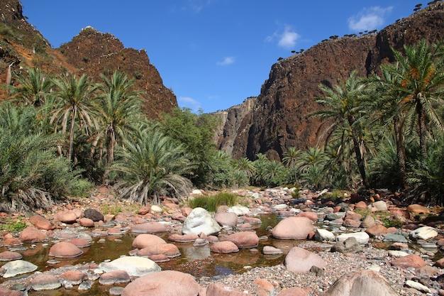 Wadi dirhur canyon, socotra-eiland, indische oceaan, yemen