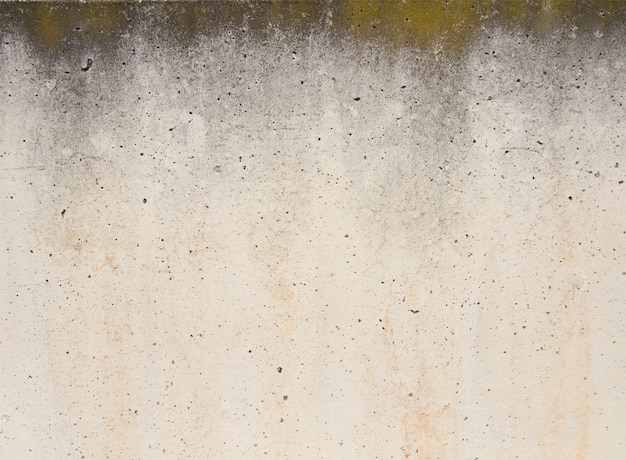 Wand met gaten
