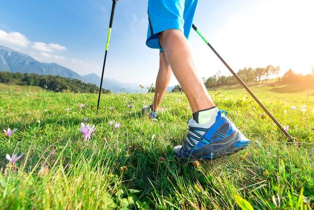 Wandel in de wei met lentebloemen met nordic walking-stokken