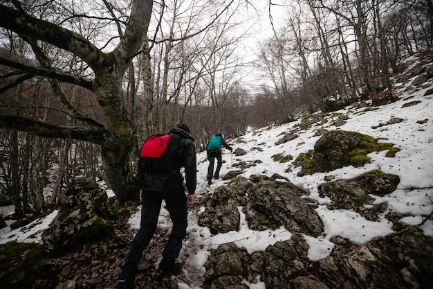 Wandelaar die door een winterlandschap loopt