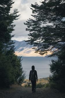 Wandelaar die in het hout loopt dat een meer overziet