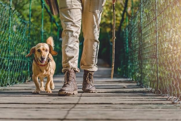 Wandelaar die met hond over houten hangbrug loopt