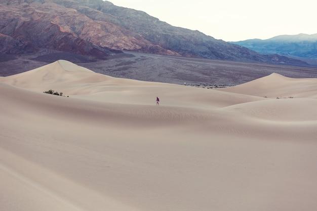 Wandelaar in zandwoestijn. zonsopgang tijd.