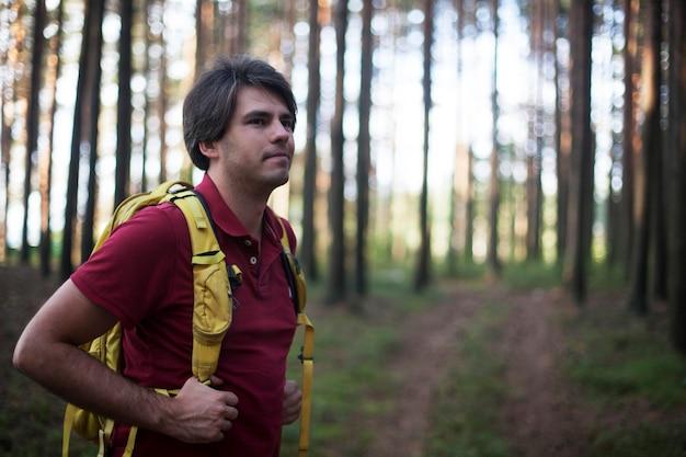 Wandelaar - man wandelen in het bos. mannelijke wandelaar die aan de partij kijkt die in bos loopt. kaukasisch mannelijk model in openlucht in aard.