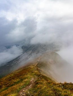 Wandelaars gaan een bergpad op in de stiermarken in oostenrijk, wandelpad, sport, mistige mou