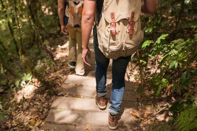 Wandelaars op weg in bos