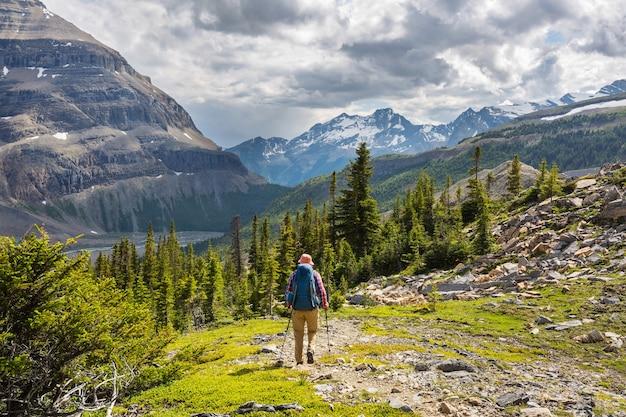 Wandelende man in canadese bergen.