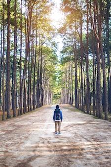 Wandelende man met rugzak wandelen in het bos.