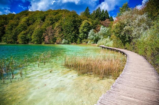 Wandelpad bij een van de meren in nationaal park plitvice, kroatië