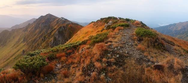 Wandelpad in de bergen. herfst landschap bewolkte ochtend. karpaten, oekraïne, europa
