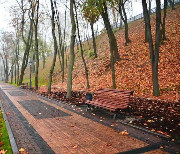Wandelpad in de ochtend veelkleurige herfst mistige park. lichte herfst achtergrond.