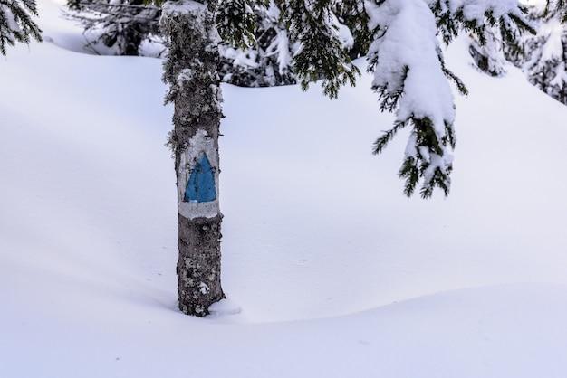 Wandelpad teken. blauw toeristenteken in bergweg in grote sneeuw.