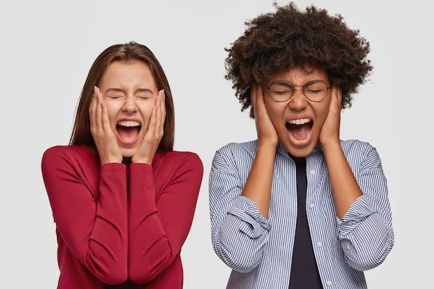 Wanhopige, verontwaardigde vrouwen raken gezicht met handen aan, schreeuwen luid, uiten woede, schreeuwen met vreselijke uitdrukkingen, voelen zich boos, gekleed in vrijetijdskleding, model tegen een witte muur. negatieve emoties